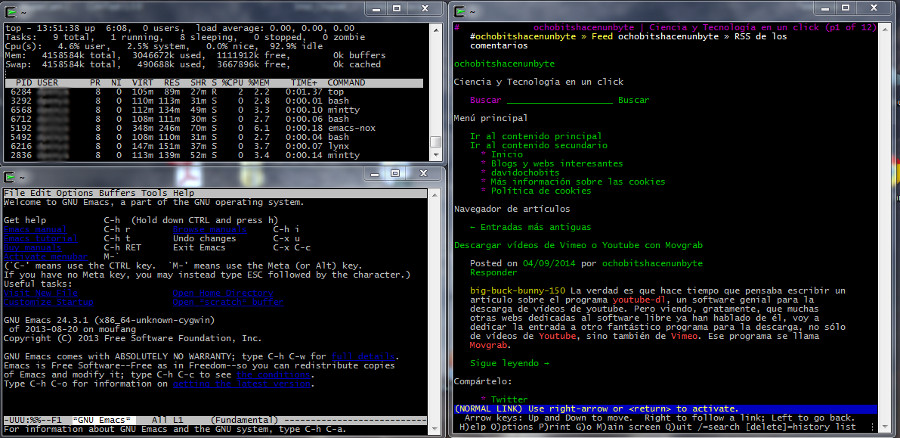 cygwin-captura-terminales