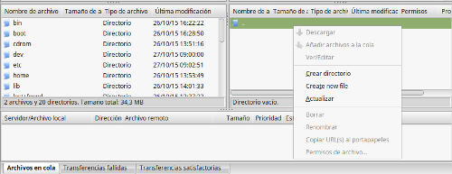 filezilla-linux-mint-directorio