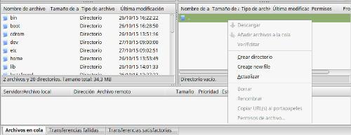 filezilla-linux-mint-directorio
