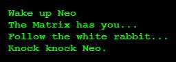 Mensaje original recibido por Neo